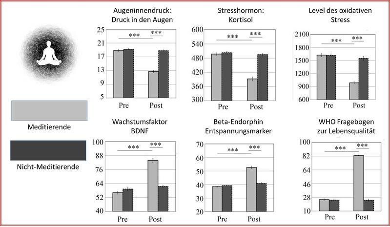 Grafik: Prof. Dr. Bernhard Sabel zur Pressemitteilung: https://idw-online.de/de/news709794 Meditation: Eine neue Therapie zur Verringerung des Augeninnendrucks bei Glaukom